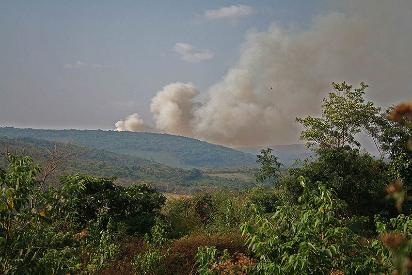 /Les incendies de savanes ...